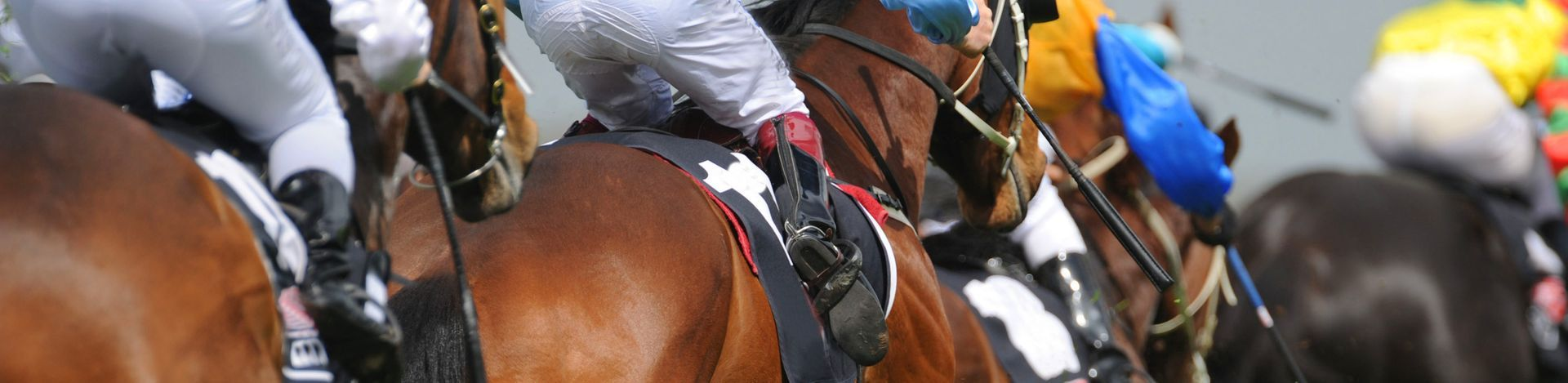 Refreshing opportunities for the horse racing industry